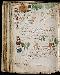 The Voynich Script